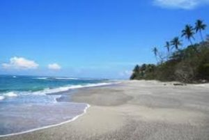 Wellness in Paradise Itinerary - Pure Trek Costa Rica